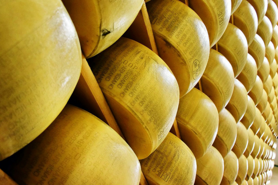 82 formaggi doxa gdo
