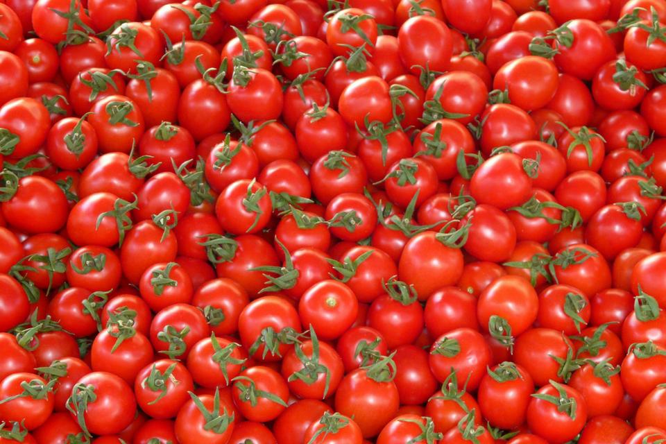 81 passata pomodoro doxa gdo